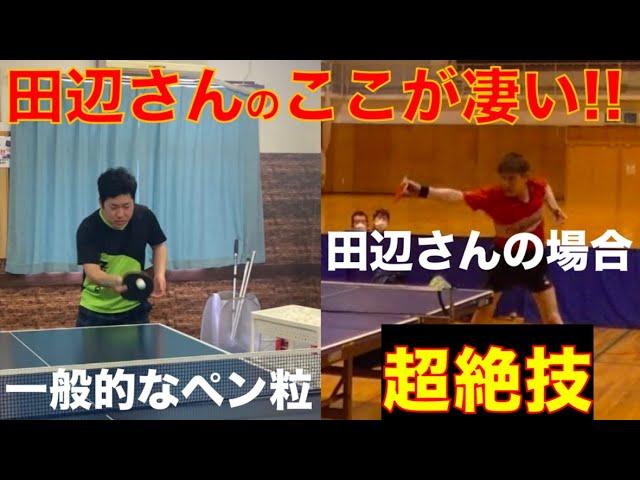 卓球‼︎ 【日本一のペン粒】田辺さんのここがスゴイ‼︎