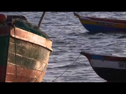 MOZAMBIQUE RURAL FINANCE SERIES - VIDEO 6 - Mr Chilaule's microbank
