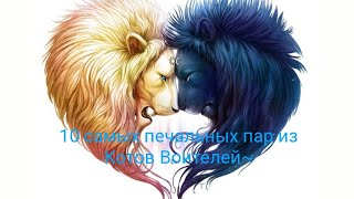 ~10 самых печальных пар из серии книг Коты Воители~