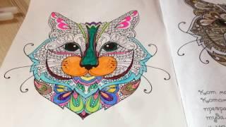 Раскрашиваем кота-Антистресс