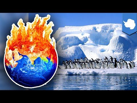 Antartika kehilangan es 6x lebih banyak daripada 40 tahun lalu - TomoNews