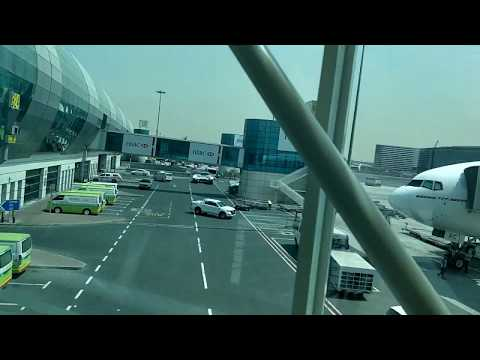 Delhi to Dubai in Emirates Economy - vlog