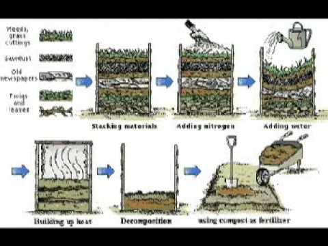 Bio Waste Management