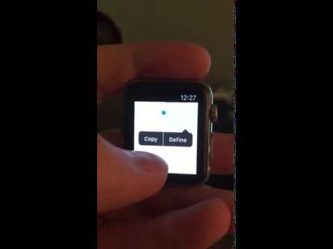 Web Browser Running on the Apple Watch