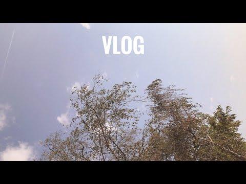 a summer week / a vlog