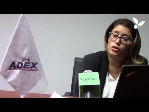 Entrevista A Paula Carrión Gerente De Agroexportaciones ADEX