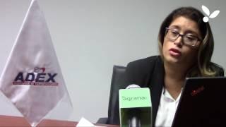 Gambar cover Entrevista a Paula Carrión Gerente de Agroexportaciones ADEX
