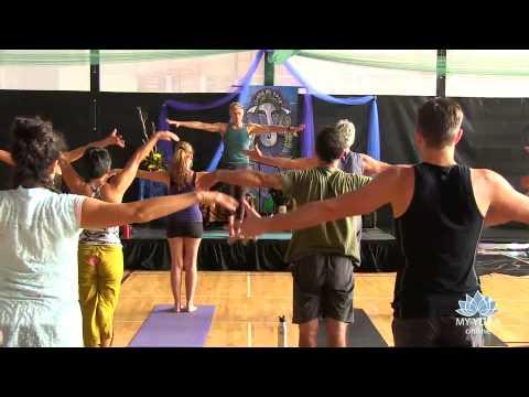 Richard Freeman Yoga: Body Matrix