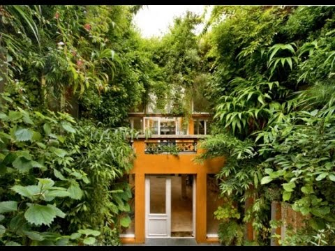 French Botanist's Paris Home Is a Regular Urban Jungle: Patrick Blanc