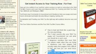 **potty Training Shih Tzu Puppy Tips - Free Mini Course**