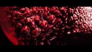 Skhizein - Trailer