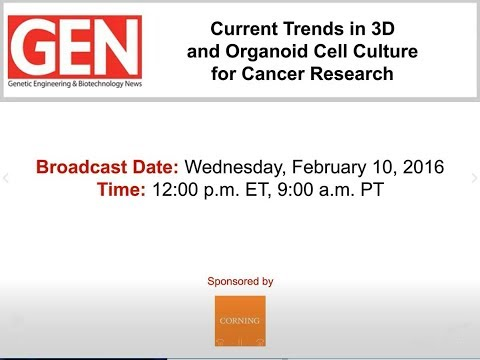 Current Trends in 3D and Organoid Cell Culture for Cancer Re