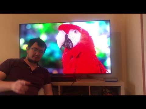 Телевизор Sony 55xf9005 краткий обзор