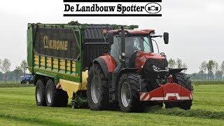 Grass silage 2019   Case Optum 270 + Krone ZX 430 GD   Koonstra   Balkbrug