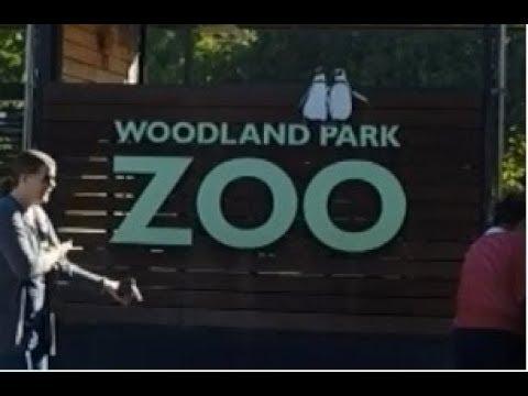 Seattle's Woodland Park Zoo | PERadise Vlog #4