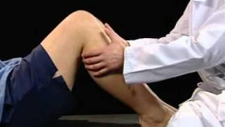 Le genou sportif