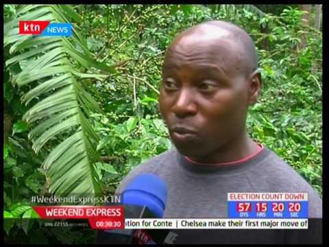 Next Frontier : Revival of coffee farms in Tanzania