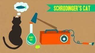 IDTIMWYTIM: Schrodinger