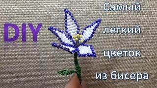 DIY - Как сплести свой первый цветок из бисера. Самый простой цветок + схема(В этом видео мы покажем основы бисеропетения. Если вы никогда не плели, то это то, с чего можно начинать...., 2016-01-24T19:00:07.000Z)