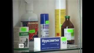 Ветеринарная аптека(, 2013-03-29T12:35:39.000Z)
