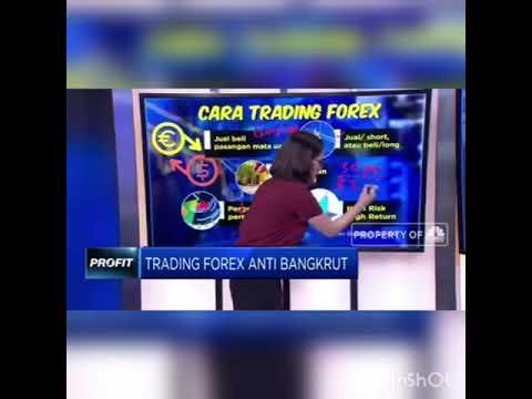 apa-itu-forex...apakah-akan-bangkrut-trading-forex..bitrexgo-trading-centre-solusi-bagi-pemula