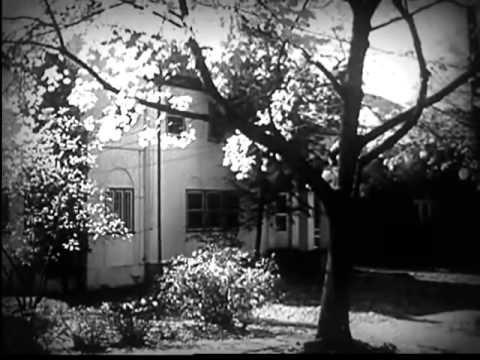 Vintage Propaganda Film: All the Way Home
