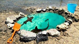 diy-saltwater-fish-pond-at-beach