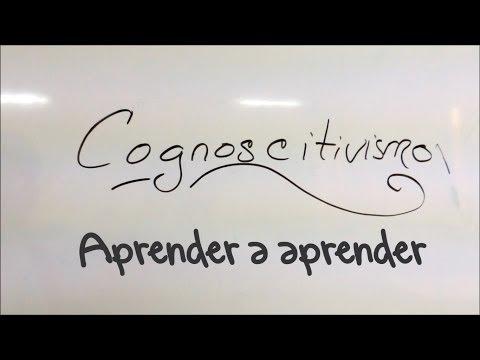 EDUCACIÓN | Principios Básicos Del Cognoscitivismo
