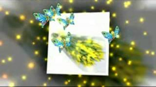 Жёлтые тюльпаны. Наташа Королева