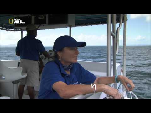 Green Paradise La Repubblica Dominicana - HD 1080p Documentario Completo ]
