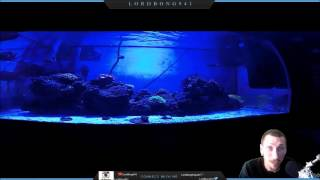 reef tank tips are uv sterilizers good or bad