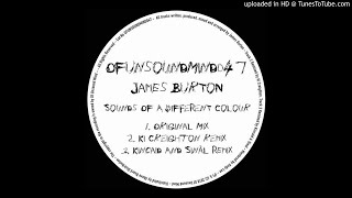 James Burton - Sounds Of A Different Colour (Ki Creighton Remix) mp3