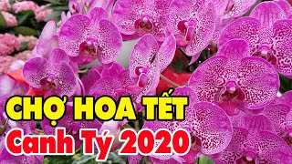 Chợ Hoa ngày Tết 2020 | Chợ HoaTết Canh Tý quận 10 Tp HCM (Sai Gon Vietnam)