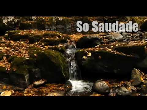 Clássicos sertanejos - so Saudade