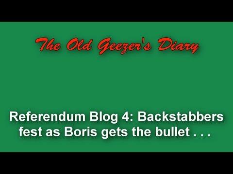 Referendum Blog 4 - Backstabbers as the Tories ditch Boris!