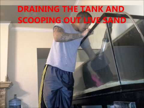 MOVING A SALTWATER TANK LONG DISTANCES PART 2 (BREAKING DOWN THE AQUARIUM)