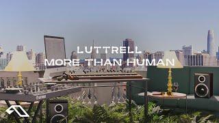 Play More Than Human