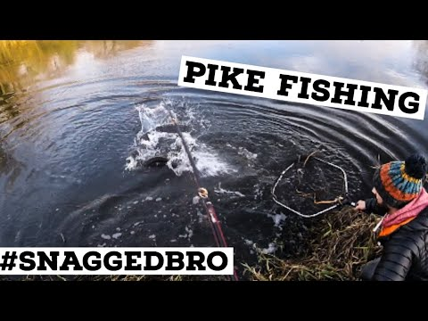PIKE FISHING - Finding New Spots