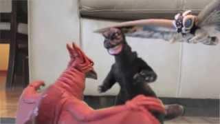Godzilla & Mothra: Loving Kaijus Ep 7