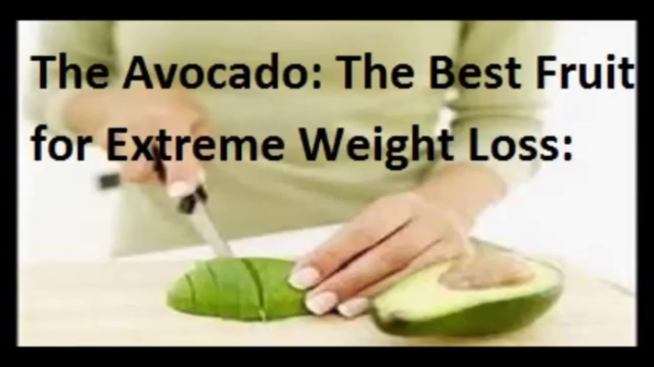 The Avocado The Best Fruit For Extreme Weight Loss
