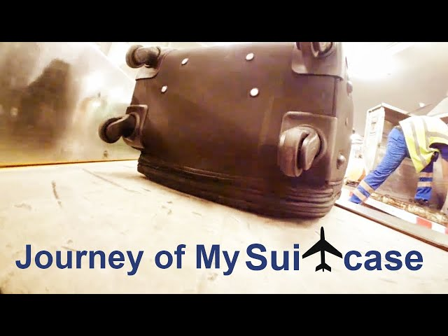 What Happens With Your Airplane Luggage?