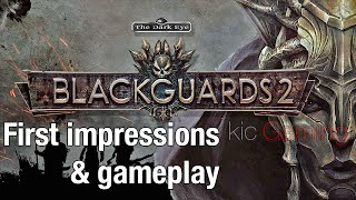Blackguards 2 First Impressions and Gameplay (clean; 60 FPS)