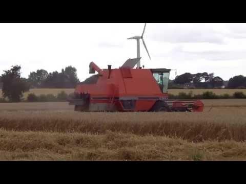 Harvest in Denmark 2016