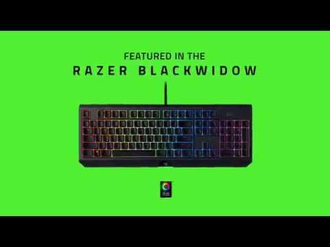 Razer Blackwidow Mechanical Gaming Keyboard (Green Switch)