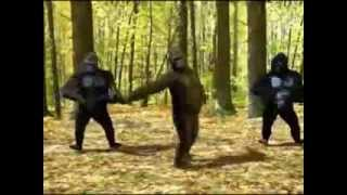 Angelina - By: Lou Bega (with dancing Gorillas)