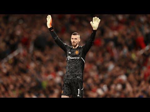 David De Gea | The Best Goalkeeper In The World | 2018/2019 | HD