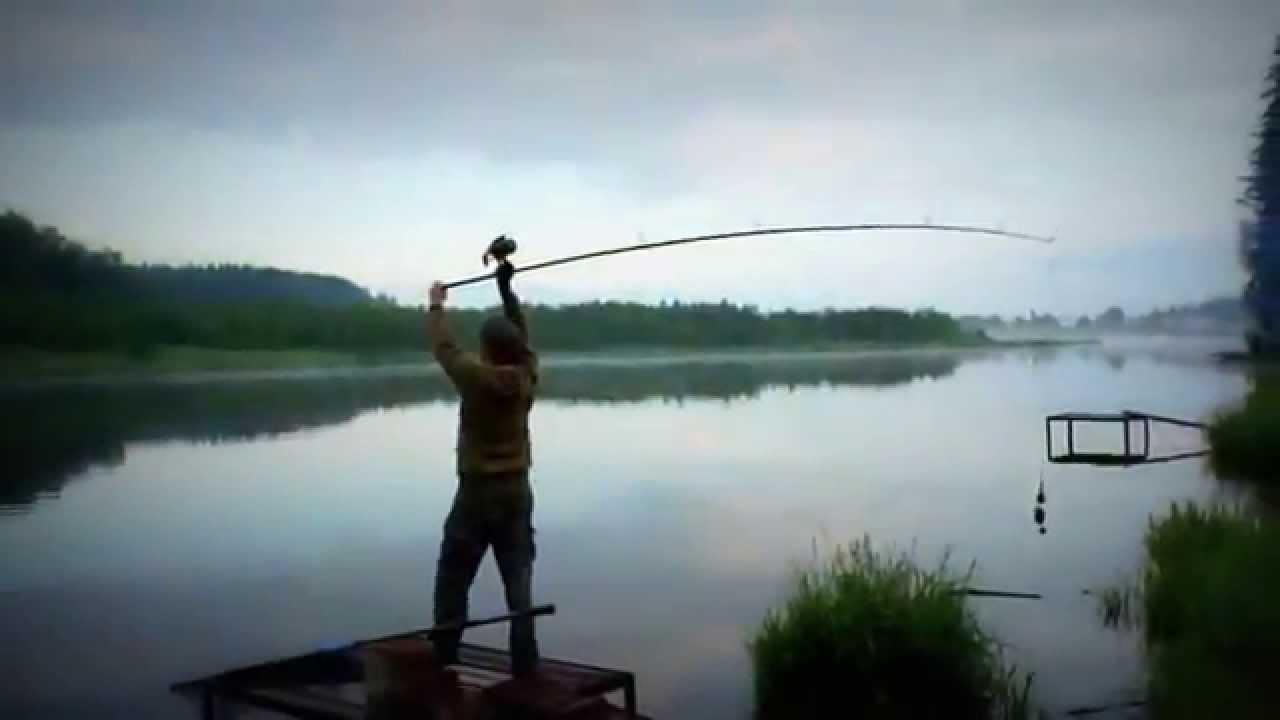Трофейная рыбалка в Подмосковье.