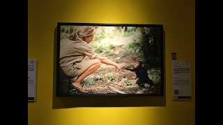Iconic National Geographic photographs comes to Beijing