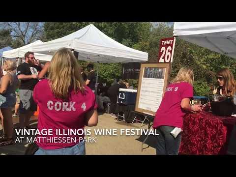 Vintage Illinois 2017 Wine Festival