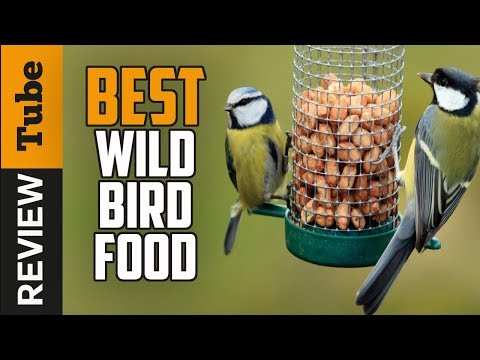 ✅Bird Food: Best Wild Bird Food 2019 (Buying Guide)